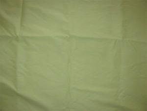 2031 Light Green